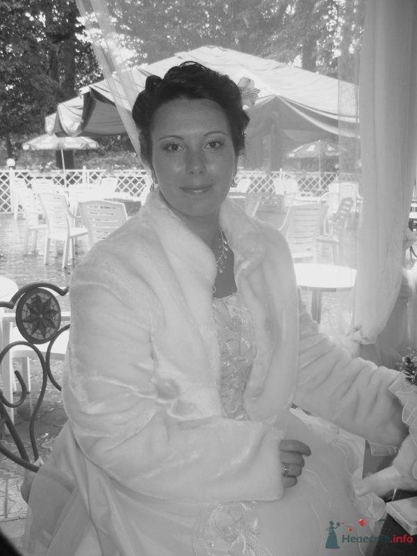 Фото 38072 в коллекции Свадьба - Ксюньчик