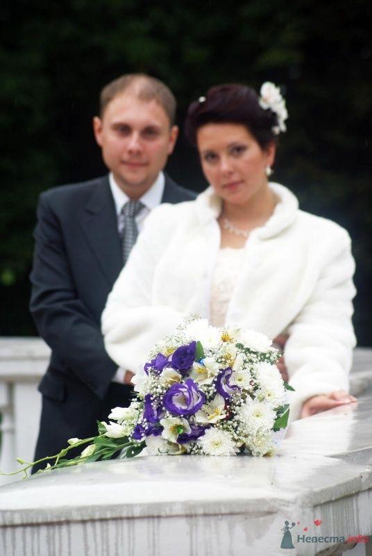 Фото 38189 в коллекции Свадьба - Ксюньчик