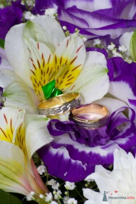 Фото 40374 в коллекции Свадьба - Ксюньчик