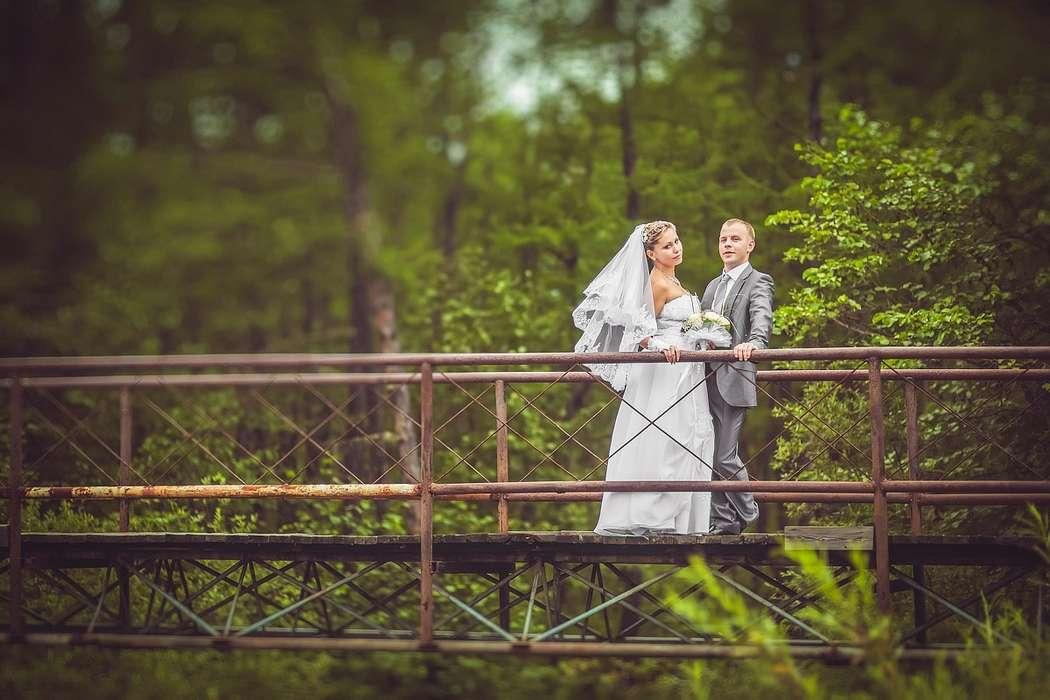 Фото 10420696 в коллекции Свадебные фотосессии - Фотограф Царенок Владимир