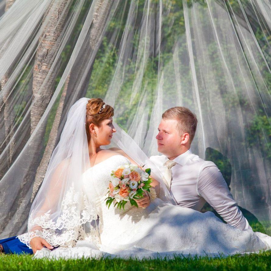 """Фото 10860726 в коллекции Wedding_day_01 - Студия свадебной фотографии """"Артбаланс"""""""