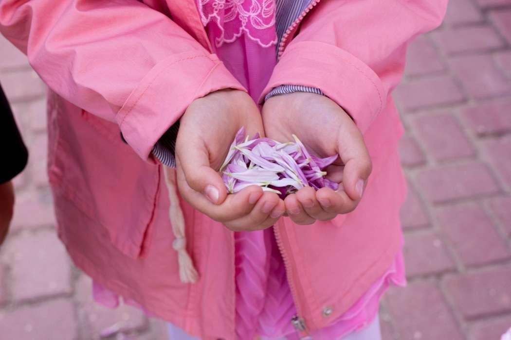 Фото 10726148 в коллекции Свадьба Елены и Алексея 12.06.15 - Видеограф AnnaFilm