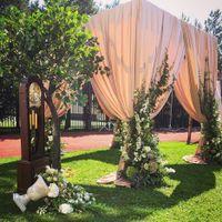 яблоня, оформление свадеб, свадебное оформление, искусственные деревья, декор для свадьбы, декор на свадьбу. свадебный декор