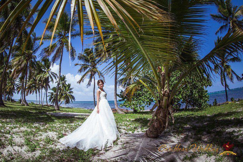 отказывает звезды эротическая свадьба в экзотических странах фото зайдя