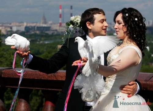 Фото 1453 в коллекции Жених и невеста=) - Dima Solovey - фотограф