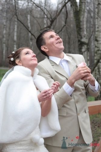 Фото 9821 в коллекции Зимняя свадьба Петра и Натальи