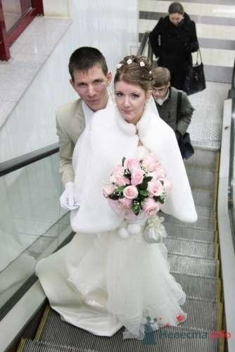 Фото 9827 в коллекции Зимняя свадьба Петра и Натальи  - Dima Solovey - фотограф