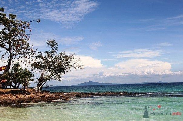 Фото 68599 в коллекции острова - dobro