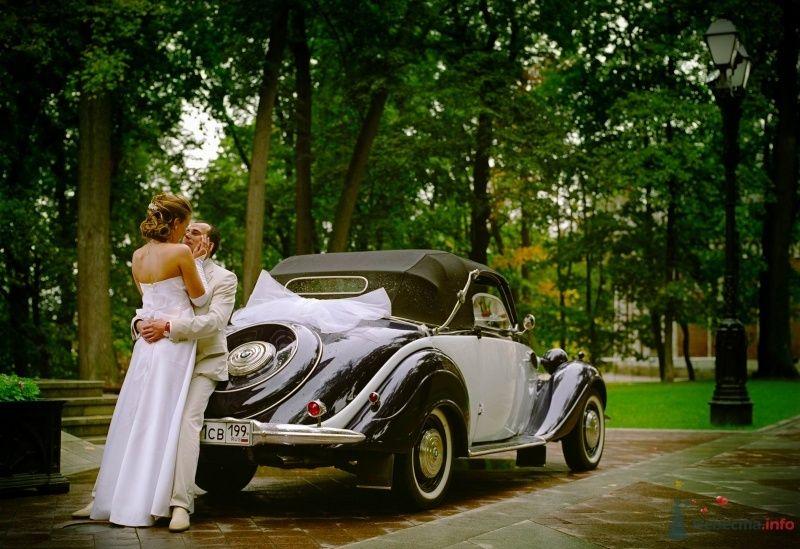 """Черный """"BMW"""" на фоне осеннего парка и счастливых молодоженов. - фото 60552 Stasy09"""