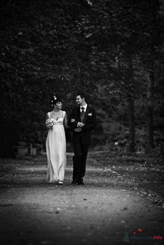 Фото 62384 в коллекции Wedding Day - Busic