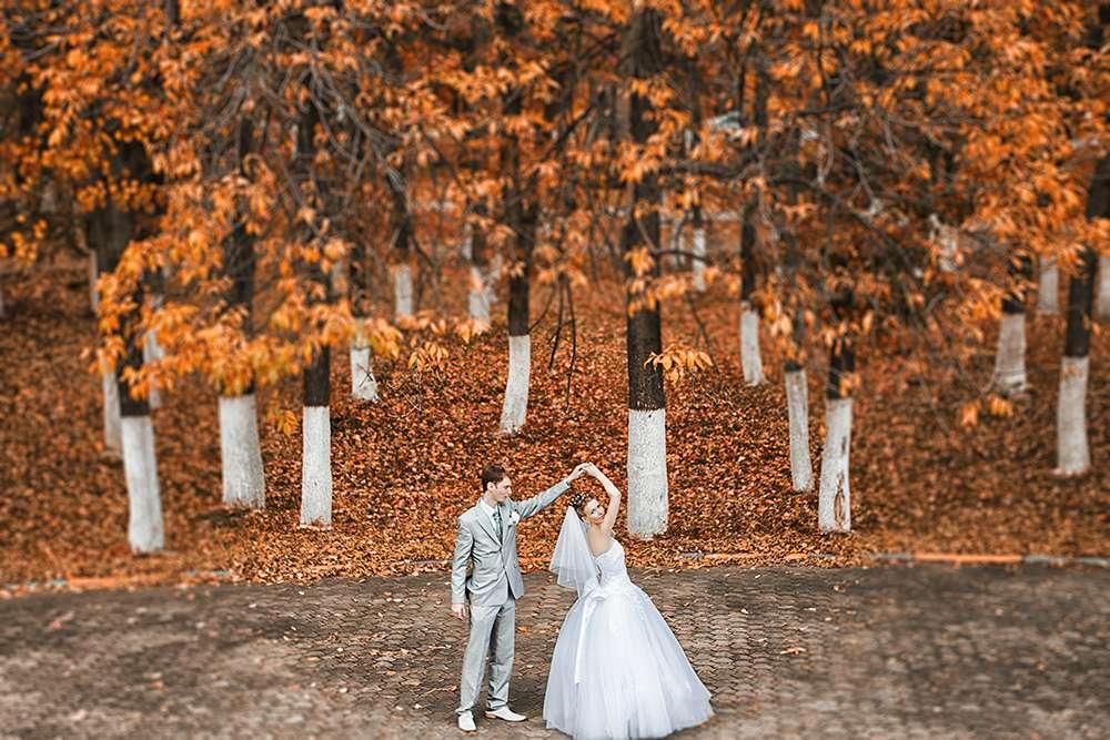 Фото 800947 в коллекции Свадебные фотографии - Борисова Евгения свадебный фотограф