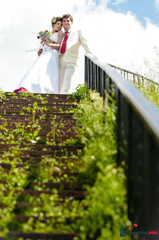 Фото 118037 в коллекции Свадебные - Mitiko