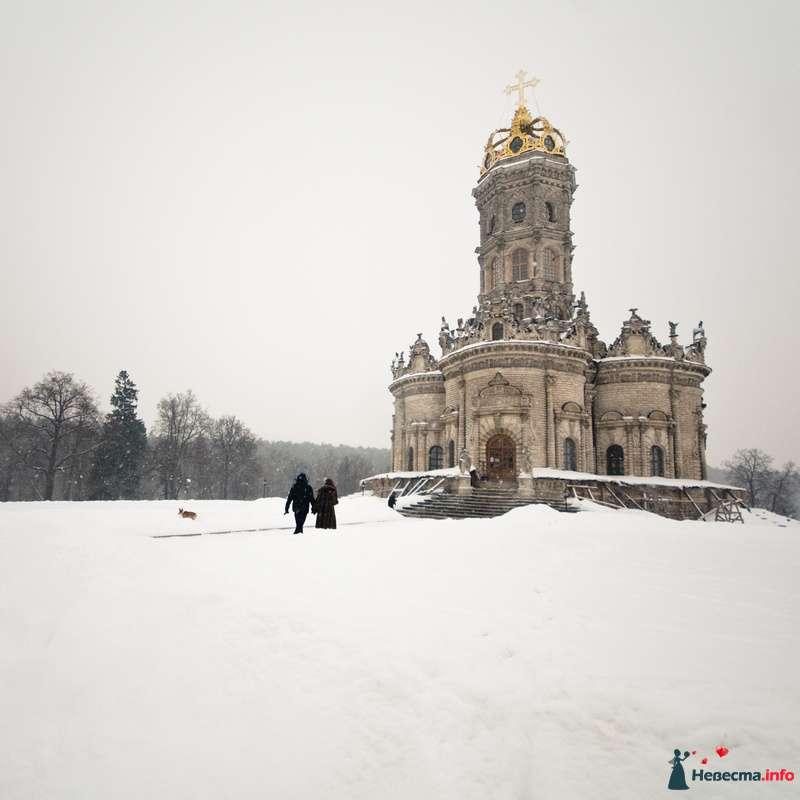 Фото 118053 в коллекции Дубровицы - Mitiko