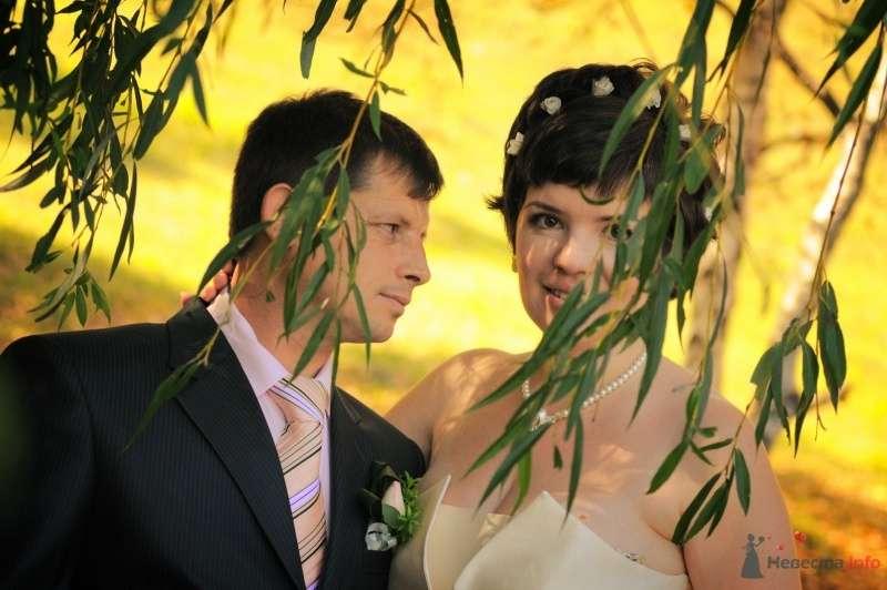 Фото 57635 в коллекции Наша свадьба глазами Катерины Черкашиной - Солнышонок