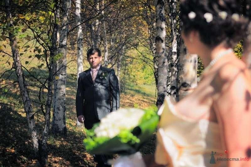 Фото 57642 в коллекции Наша свадьба глазами Катерины Черкашиной - Солнышонок