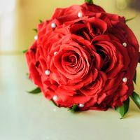 Моя розамелия