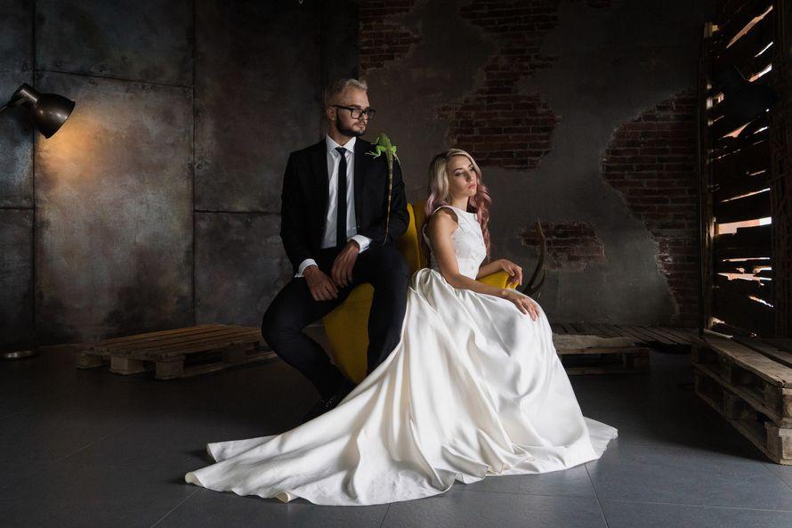 """Нестандартные свадебные фотосессии с животными!!!! - фото 11973866 """"Сто зверей"""" - агентство дрессированных животных"""