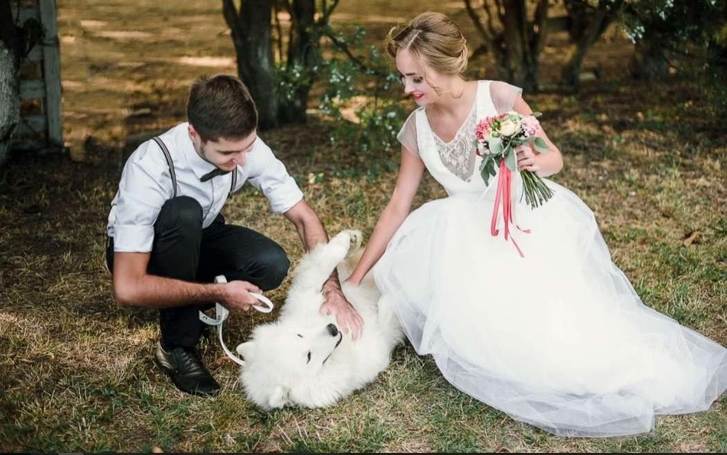 """Нестандартные свадебные фотосессии с животными!!!! - фото 11974000 """"Сто зверей"""" - агентство дрессированных животных"""