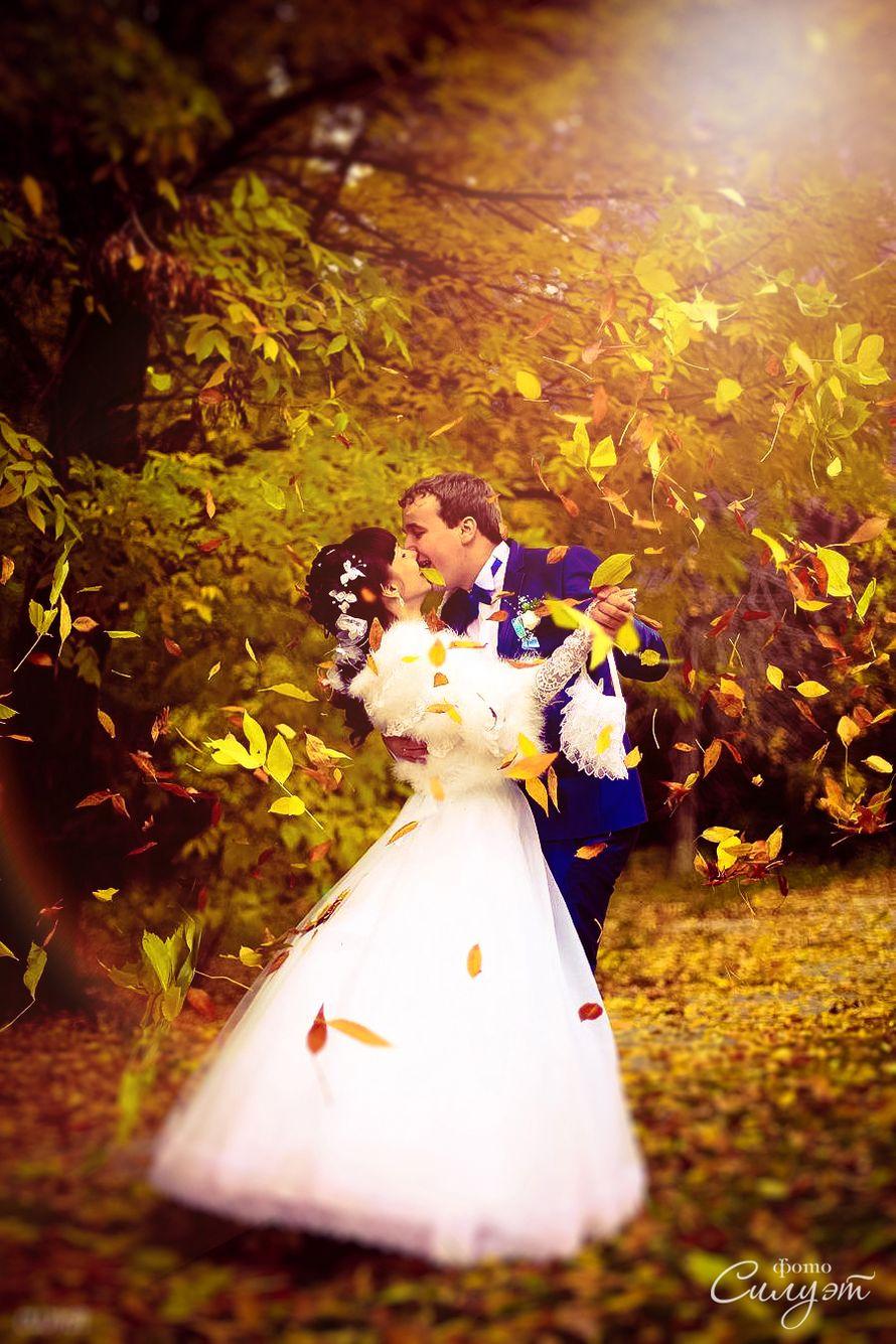 Фото 12025652 в коллекции Свадебные фотосессии - Фтовидеостудия Силуэт