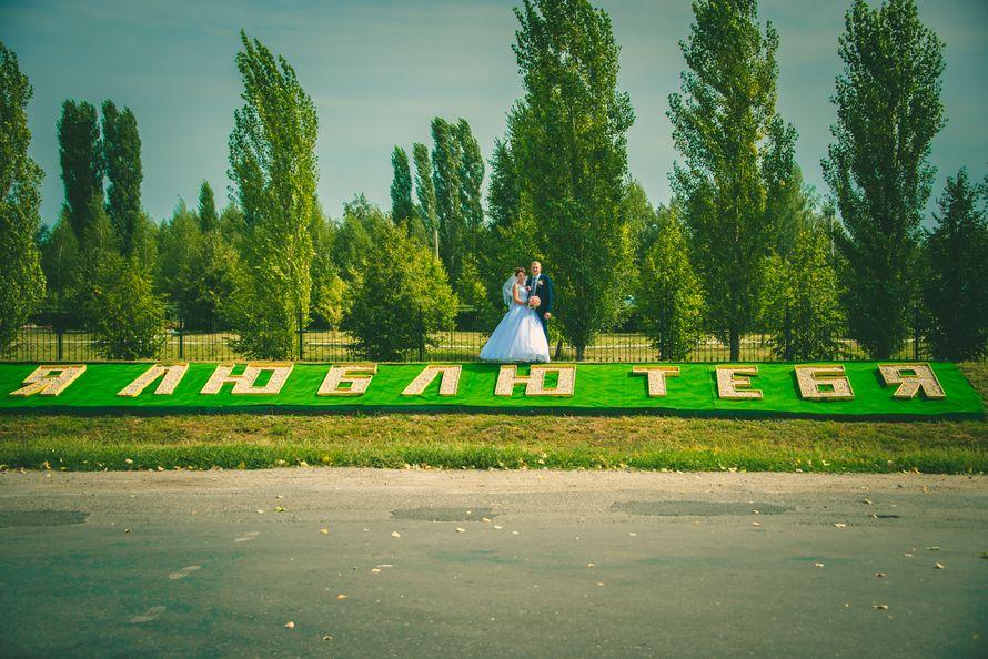 Фото 12132646 в коллекции Портфолио - примеры работ - Видеограф Дмитрий Адоньев