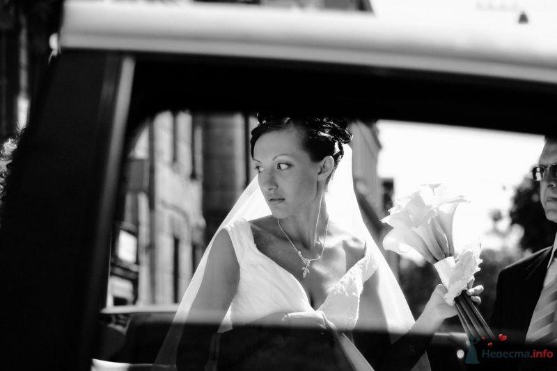 Фото 59698 в коллекции My wedding