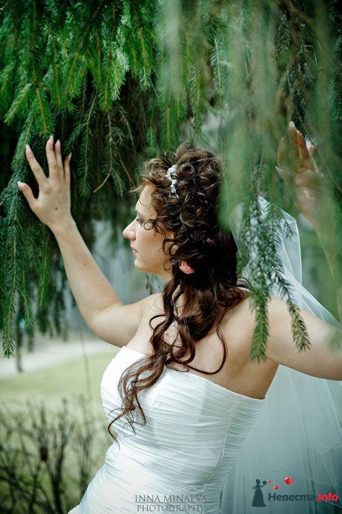 Фото 108704 в коллекции Мои фотографии - Ваш фотограф - Inna Minaeva