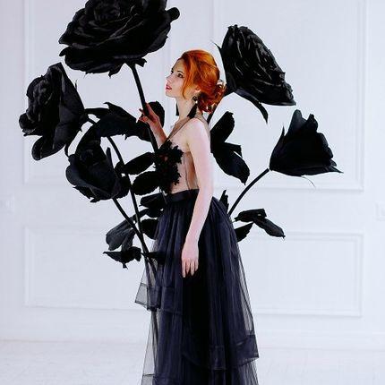 Куст черных роз - аренда