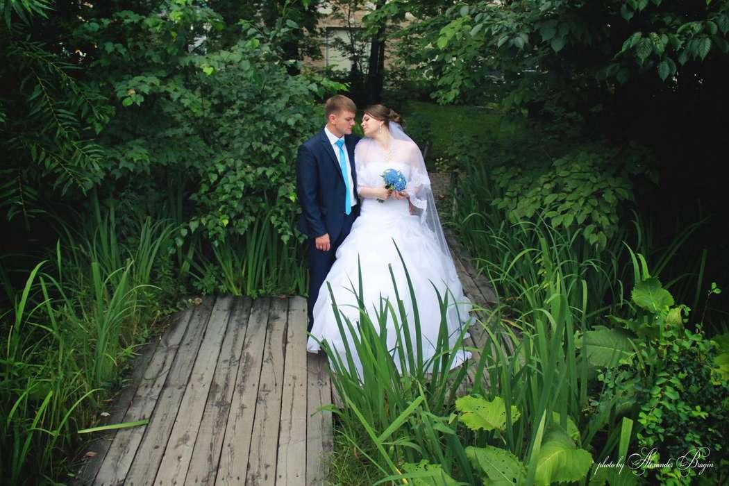 Фото 12635498 в коллекции Свадебные фотосессии - Alex Bragin photo