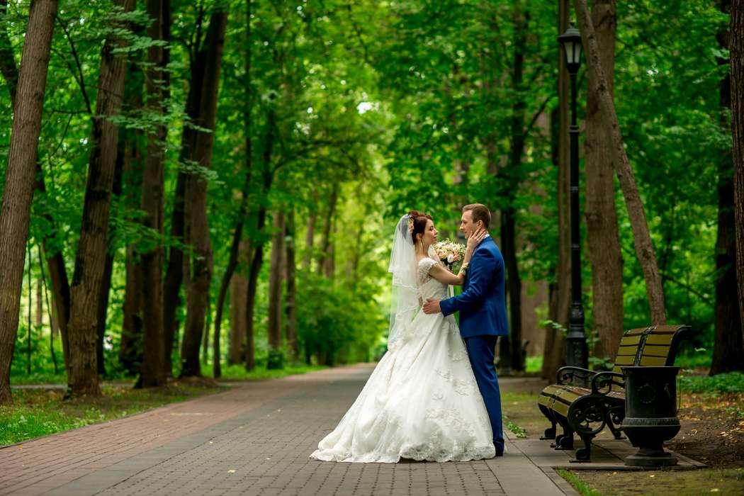 заказ съемки вашей свадьбы 89851660401  - фото 12732634 Anna Popstudio - фотосъёмка