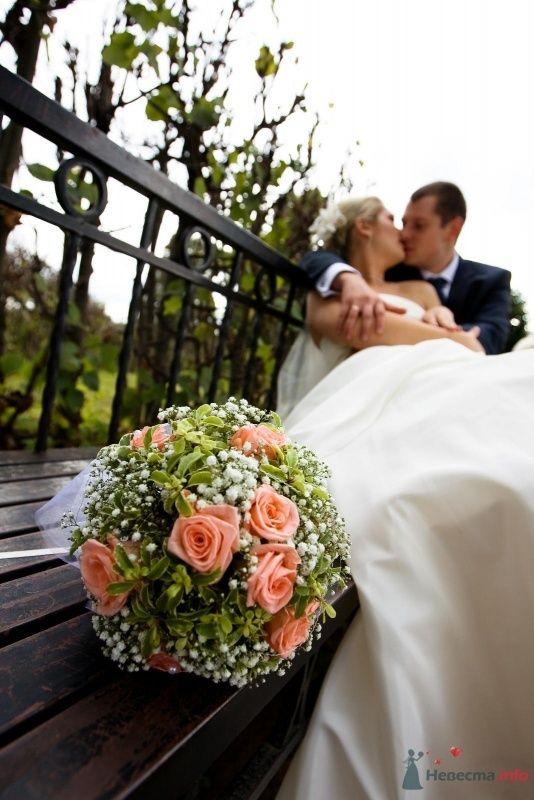 Фото 45380 в коллекции My Wedding - Катеринчик