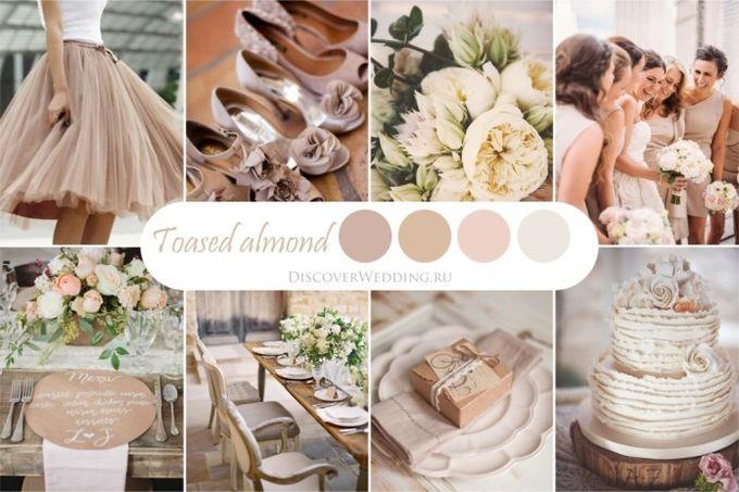 палитра свадьбы
