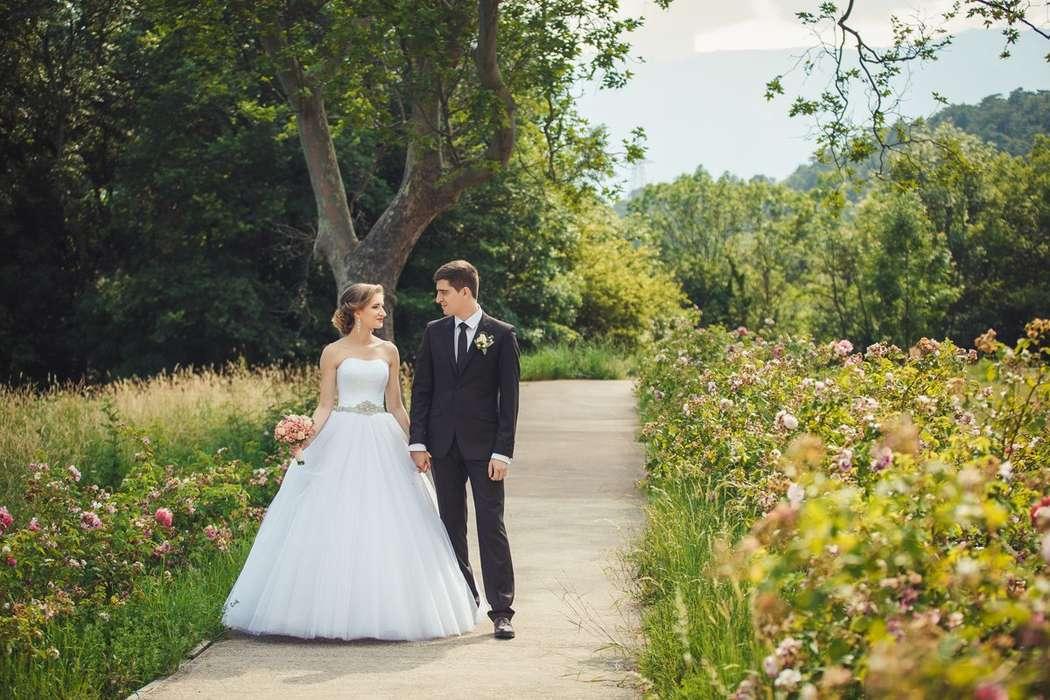 Фото 13138676 в коллекции Портфолио - Candybana - свадебное агентство