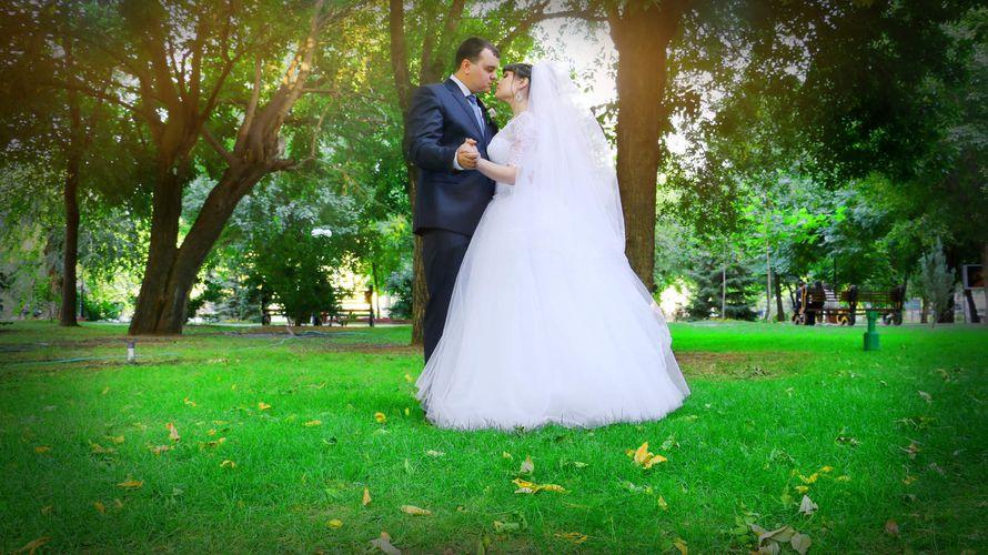 Фото 13458450 в коллекции Свадебные фотки - Видео и фотосъёмка - Александр Пугачев