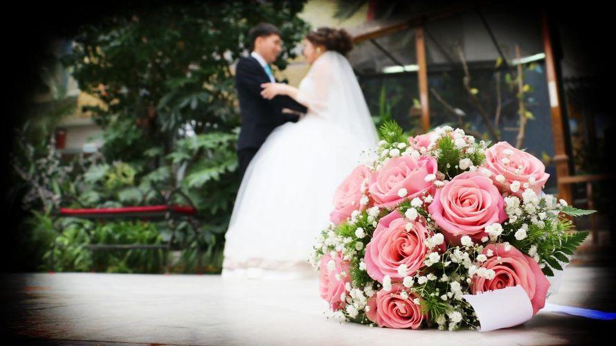 Фото 13458524 в коллекции Свадебные фотки - Видео и фотосъёмка - Александр Пугачев