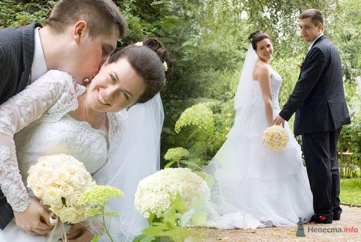 Фото 43904 в коллекции свадьбы - Фотограф Евгения Шимановская
