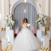 выездная регистрация, выездная церемония, обмен кольцами, фотозона, бело-золотая свадьба, бело-золотой декор, невеста, роскошное платье, красивая невеста