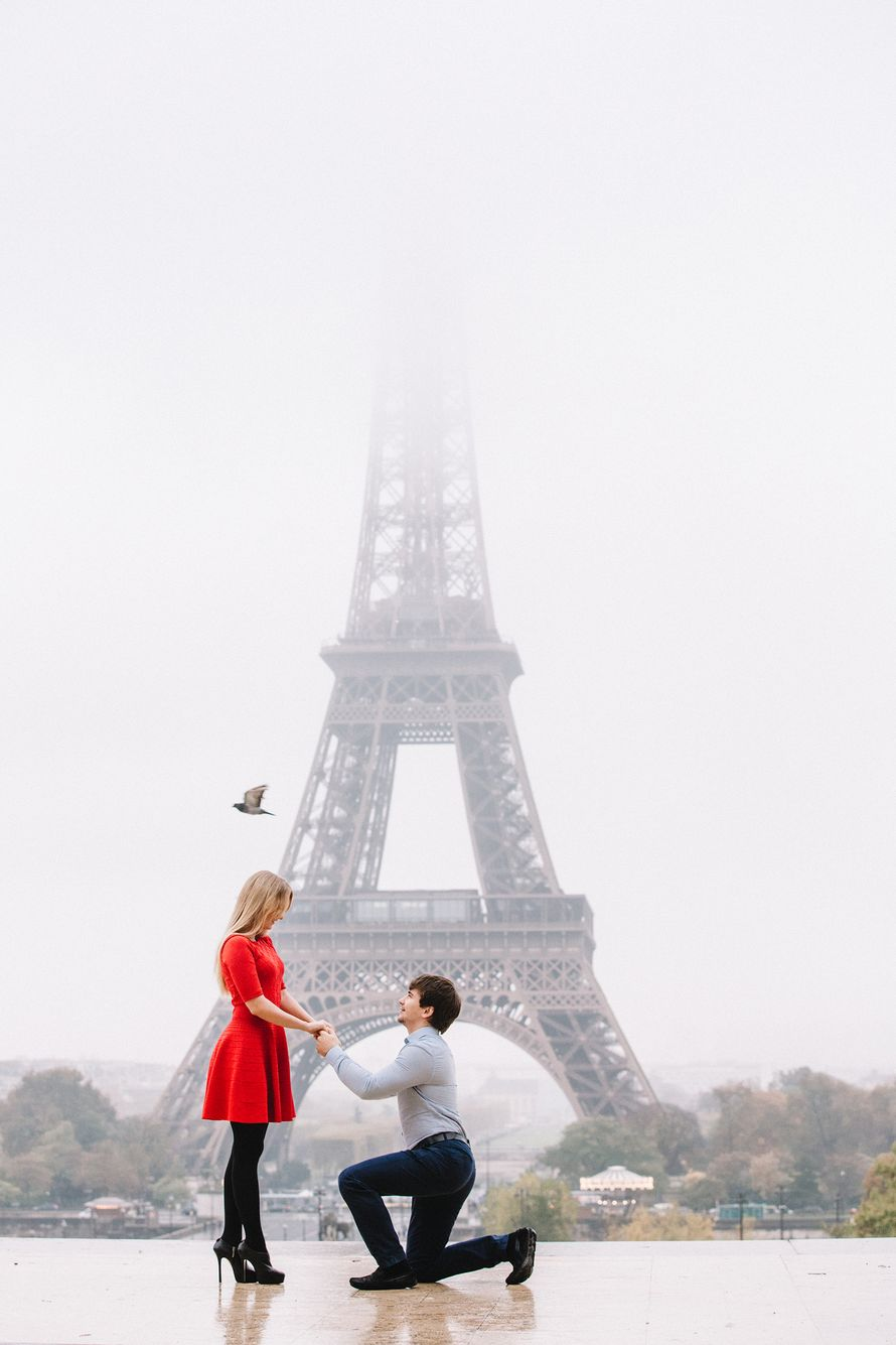 Фото 13547698 в коллекции Портфолио - Видеооператор Smile in Paris