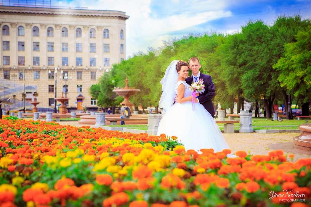 Фото 13721192 в коллекции Свадебный - Фотограф Яна Новикова