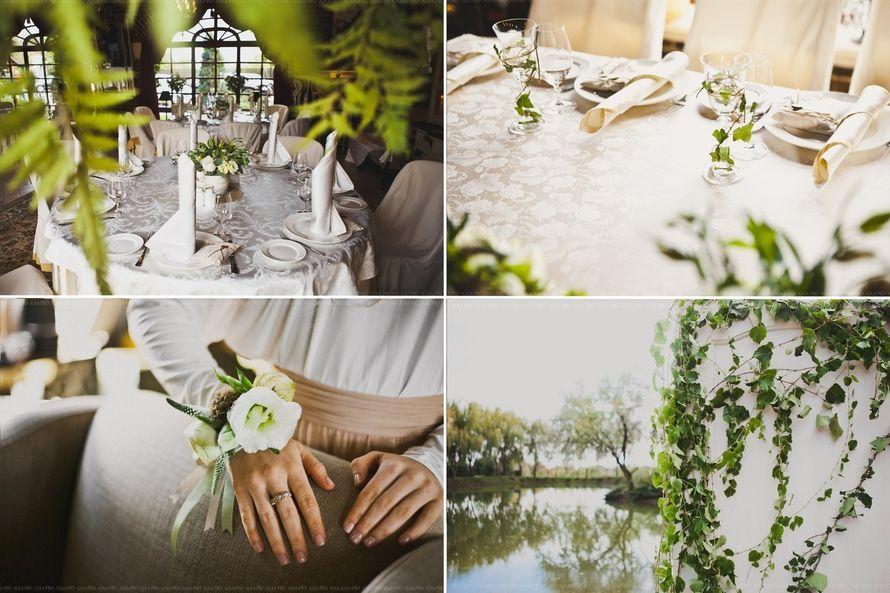 Фото 13795172 в коллекции Wedding - Свадебный организатор Стоянская Татьяна