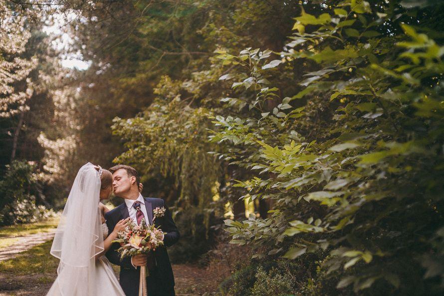 Фото 13937528 в коллекции Свадьба в NeverLand - Свадебный распорядитель Katerina Grishchenko