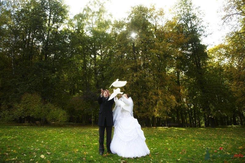 Фото 61283 в коллекции Свадьба! - Tashechka