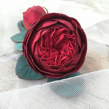 Гребень с пионовидной розой и эвкалиптом