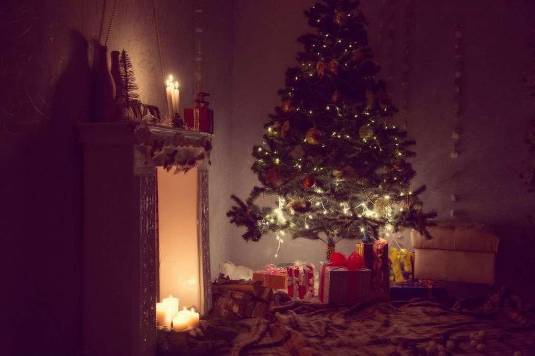 Новогодний фотопроект - фото 14580450 Фиеста - праздничное агентство