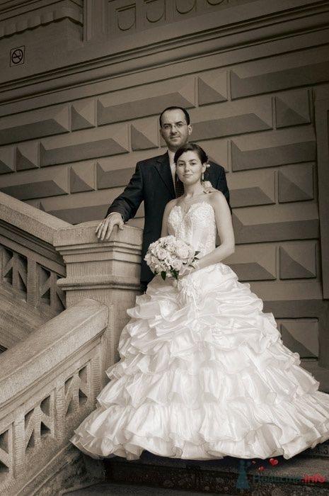Свадьба - фото 34760 Фотограф Андрей Малышев