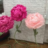 Аренда гигантских цветов