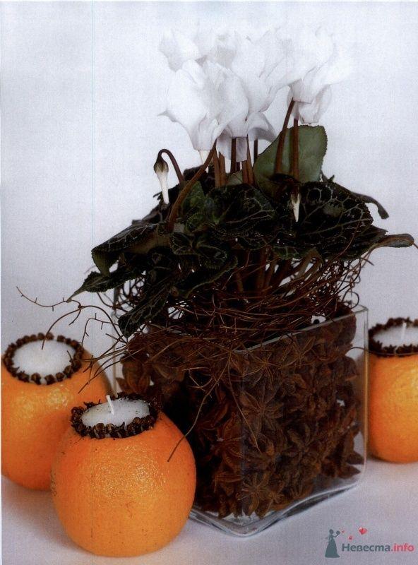 Фото 41395 в коллекции Цвяточки!  - Вашкетова Юлия - организатор свадеб, флорист.