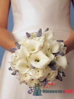 Фото 50593 в коллекции Цвяточки!  - Вашкетова Юлия - организатор свадеб, флорист.