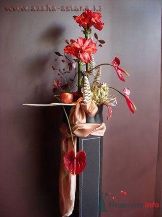 Фото 51865 в коллекции Цвяточки!  - Вашкетова Юлия - организатор свадеб, флорист.