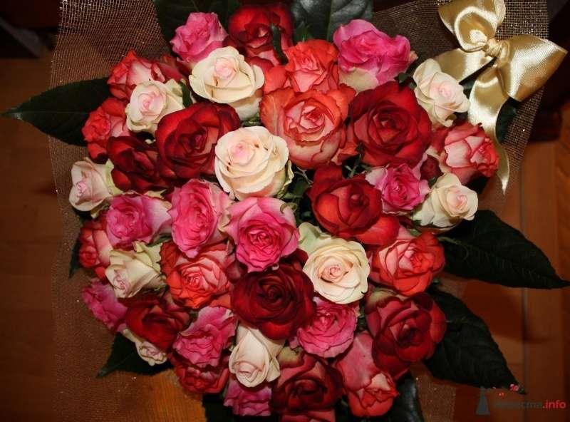Фото 67656 в коллекции Своими руками - Вашкетова Юлия - организатор свадеб, флорист.