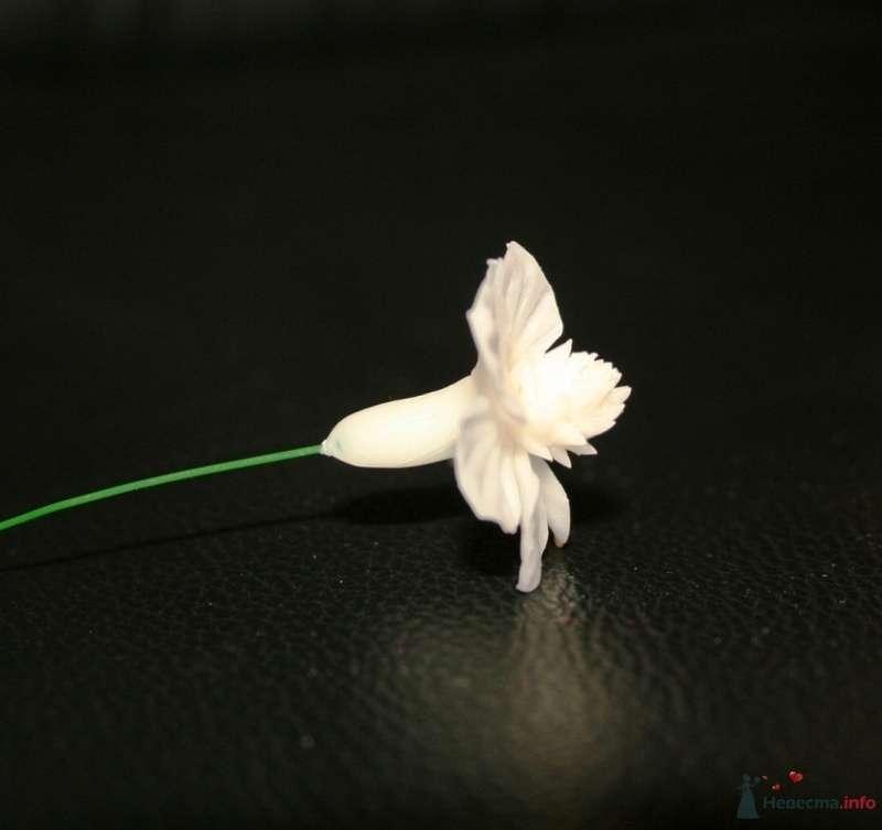 Фото 76313 в коллекции Фарфоровые цвяточки (handmade) - Вашкетова Юлия - организатор свадеб, флорист.